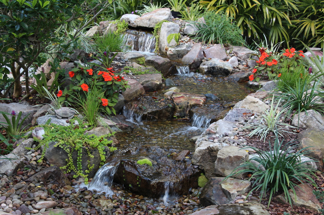 Water Garden Tropical Water Gardens Tropical Water Gardens